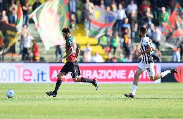 Ternana-Ascoli, le foto della partita (LaPresse)