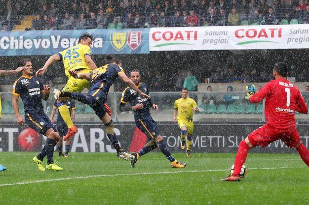 Chievo Verona-Hellas Verona 1-1, Inglese (Lapresse)