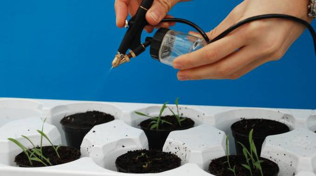 Distribuzione in ambiente sperimentale degli oli essenziali su piante infestanti