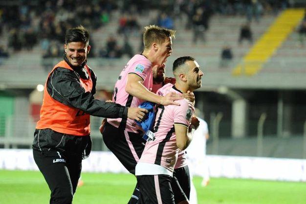 L'esultanza dopo il gol di Nestorovski (foto Lapresse)