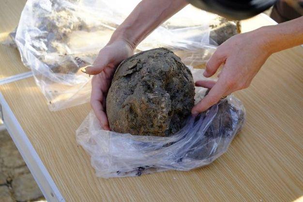Oltre le tombe ritrovati anche numerosi reperti antichi (foto Frasca)