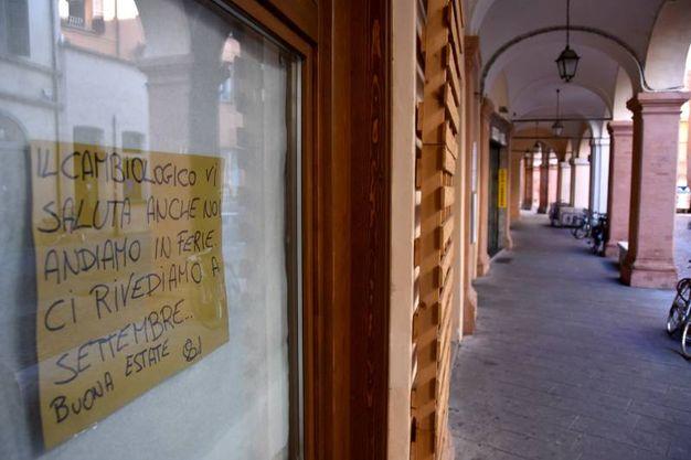 Fioriscono i cartelli 'Affittasi' (foto Fantini)