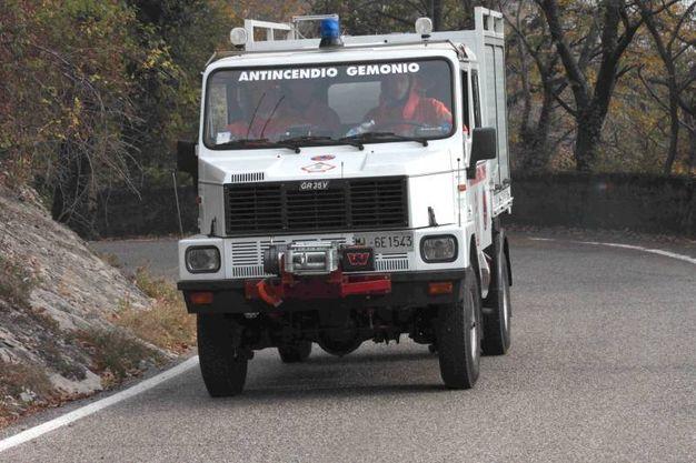 Vigili del fuoco, protezione civile e volontari al lavoro senza sosta per sottrarre il bosco alle fiamme