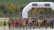 Più di 1.400 gli iscritti alla 'Mezza maratona d'Italia', ideata e fortemente voluta da Giorgio Calcaterra, l'ultramaratoneta più famoso al mondo (foto Isolapress)