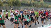 Da un'idea di Giorgio Calcaterra nasce la prima mezza maratona d'Italia (foto Isolapress)