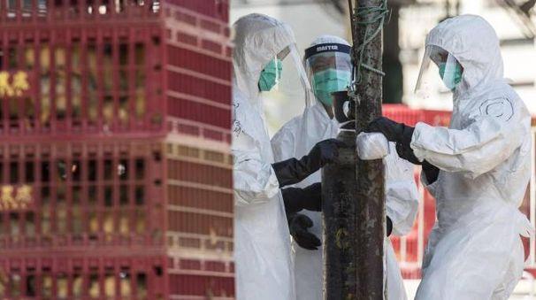 Operatori in azione contro il virus