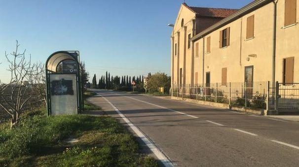 Loreo, il luogo dell'incidente (foto Moretto)