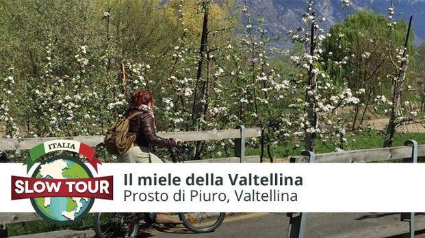 Syusy in bicicletta in Valtellina