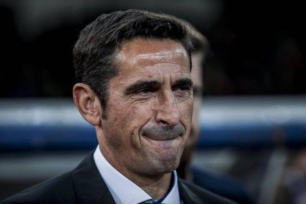 Manuel Jimenez, allenatore dell'AEK Atene (Ansa)