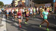 La Corsa dei Gessi, classica del panorama podistico romagnolo (foto Ravaglia)