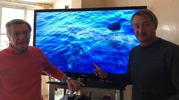 Gino Allegri e Lorenzo Fraiese hanno avvistato lo squalo al largo di Rimini