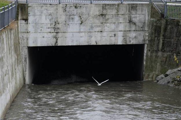 Il fiume Seveso a Milano (Newpress)