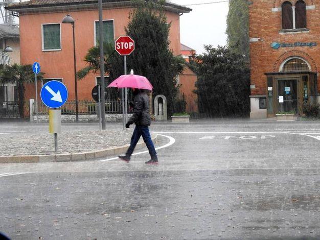 Pioggia intensa anche in quasi tutta a Bassa Romagna (Foto Scardovi)
