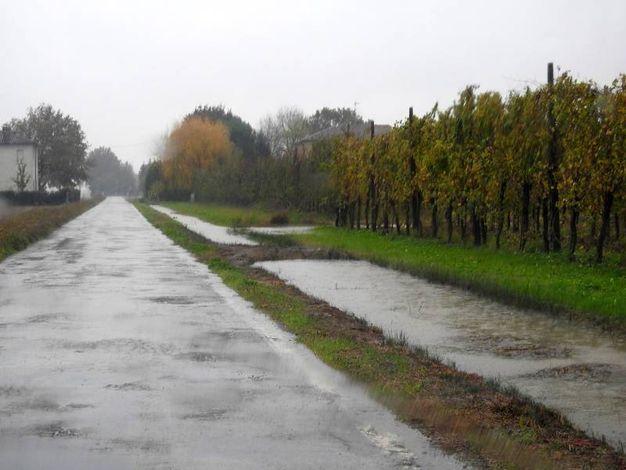 Campagne intorno a Belricetto (Foto Scardovi)