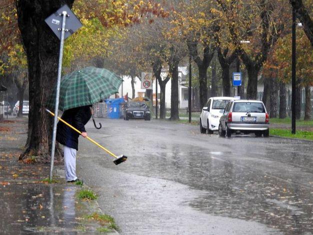 Pioggia intensa a Bagnacavallo (Foto Scardovi)