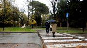 A Lugo sono caduti 67 millimetri di pioggia in 11 ore (Foto Scardovi)