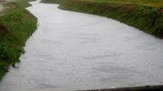 Fossi e canali d'irrigazione cominciano ad 'ingrossarsi' (Foto Scardovi)
