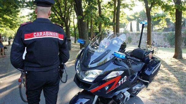 Nuovi arresti al parco Cervi