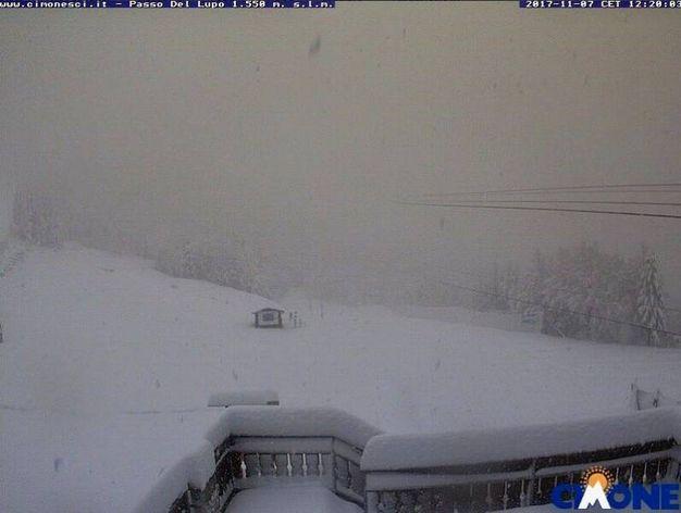 Monte Cimone (foto webcam, twitter)