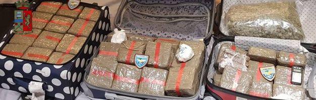 Le valigie cariche di droga