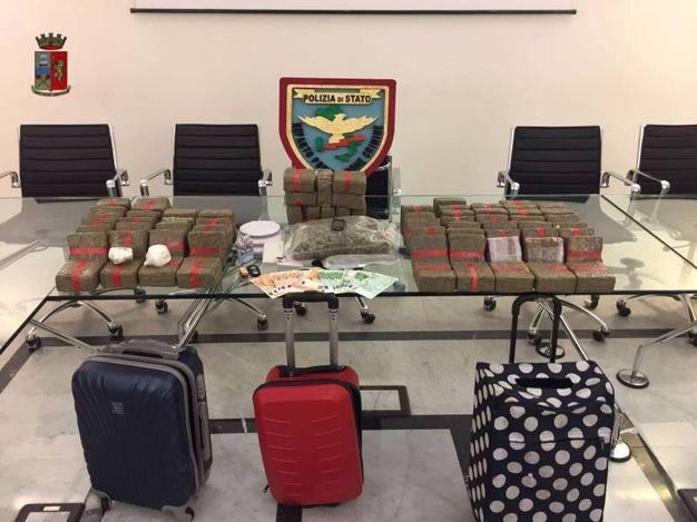 La conferenza della polizia con il carico 'stupefacente' che ha portato all'arresto del 24enne
