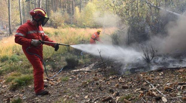 I vigili del fuoco hanno domato gli incendi
