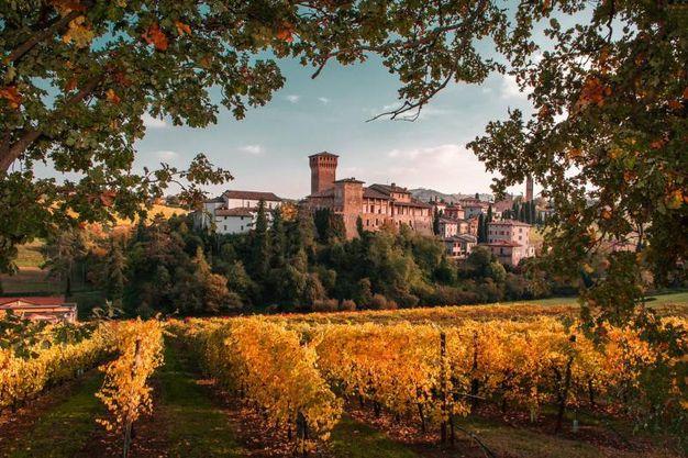 Premio speciale FIAF Castello di Levizzano - Castelvetro di Modena (MO) Fotografia di Angelo nastri nacchio