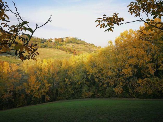 Panorama verso Bologna dal parco di Villa Ghigi, foto di Simone Bastia
