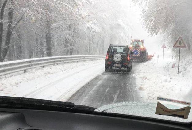 Il Passo del Giogo (Firenze) sotto la neve  - Foto Germogli