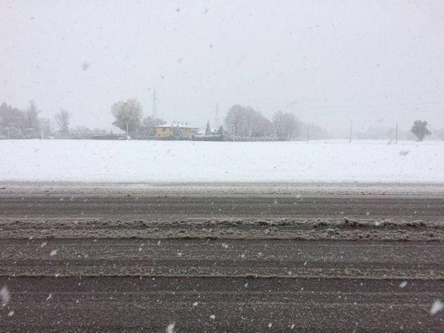 Neve a Bologna