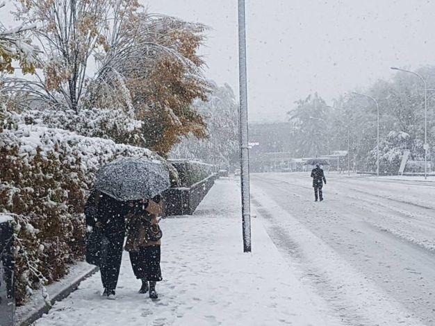 Neve a Bologna (Dire)