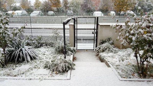 Neve in giardino, foto di Loredana Lepore