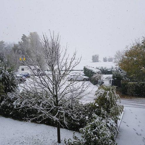 La neve è arrivata anche a Granarolo, foto di Nary M.