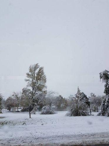 Rosalba Giotta ci ha mandato questa foto della neve a Castel San Pietro