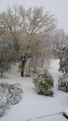 Marilena A. c ha mandato questa foto della neve