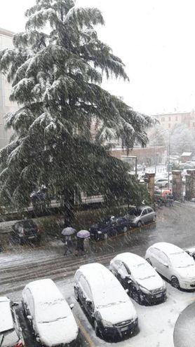 Auto coperte di neve, foto di Alessandra Romagnoli