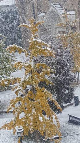 La neve ha liberato piazza San Francesco dai bonghi