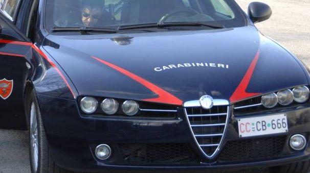 L'indagine  svolta dai carabinieri