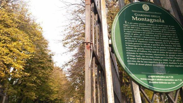 Il giardino della Montagnola, luogo dell'aggressione (foto  Dire)