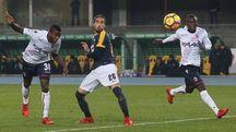 Il gol di Okwonkwo contro il Verona (LaPresse)