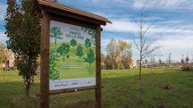 Ferragamo pianta 200 alberi a Sesto Fiorentino