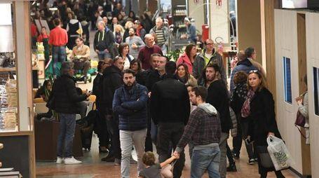 Visitatori a Fico (FotoSchicchi)