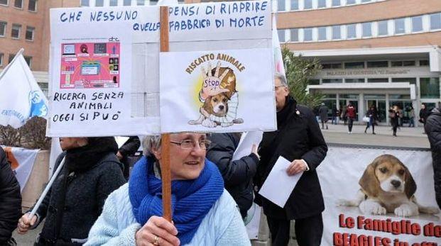 Animalisti fuori dal tribunale nei giorni del primo processo (Fotolive)