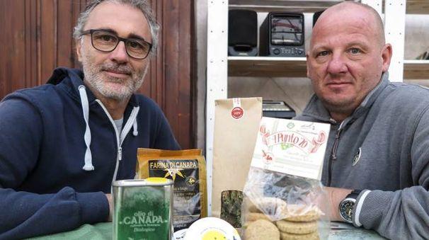 Angelo Bullini e Marco Nadiani con le cime di cannabis essiccate