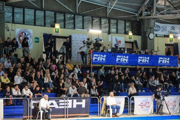 Pallanuoto, Rari Nantes-Lazio (foto Germogli)