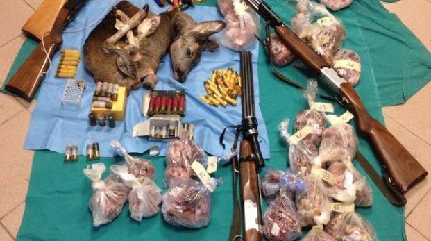 """Armi, proiettili e """"trofei di caccia"""" sequestrati"""