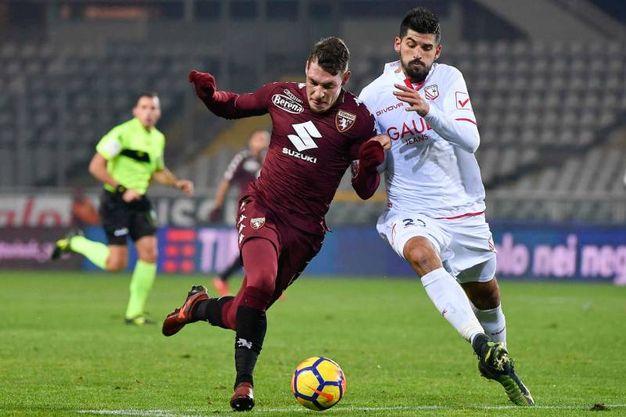 Torino-Carpi di Coppa Italia (foto Lapresse)