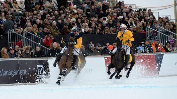 Il polo sulla neve tenta l'ingresso alle Olimpiadi