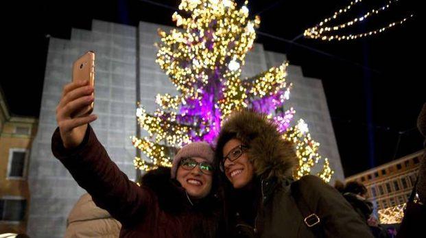 L'albero di Natale in piazza a Ferrara (foto Businesspress)
