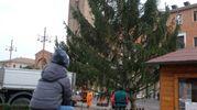 Le decorazioni dell'albero verranno accese l'8 dicembre (foto Frasca)